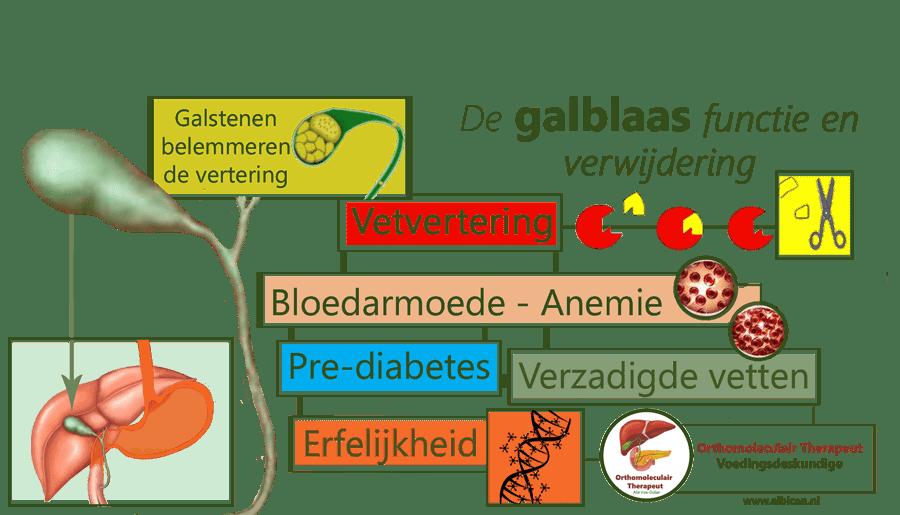 Galblaas