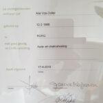 Chakra - Aura healing, diploma