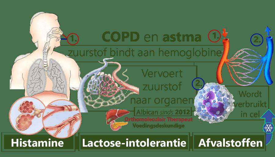 COPD, Astma, hemoglobine, histamine, lactose intolerantie, pre-diabetes, ontsteking, allergische reactie