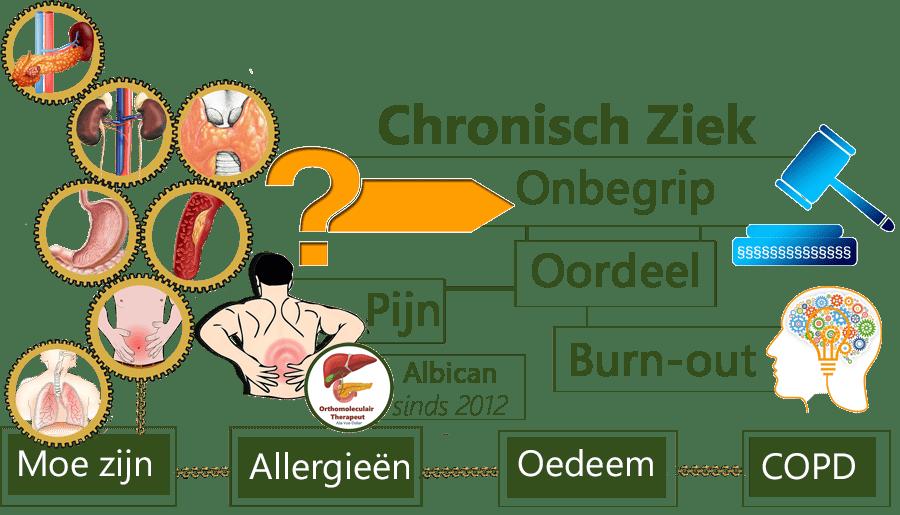 Chronisch ziek, onbegrip, oordeel, pijn, Burn-out, moe zijn, allergieën, Depressie, fibromyalgie, oedeem, COPD, Depressie, bloedarmoede, Vitamine B12 te kort, artrose, reuma